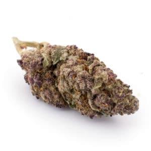 bc bud supply