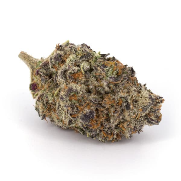 weed buds
