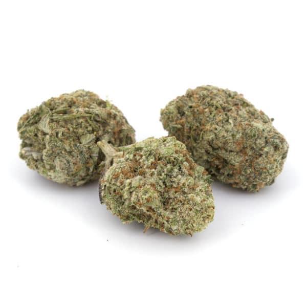 energetic weed
