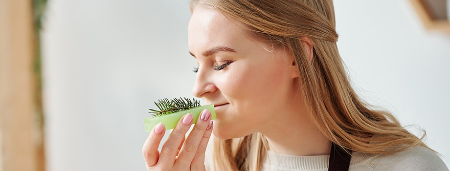 Young woman enjoying smell of fresh conifer. buy marijuana cannabis online in Canada.