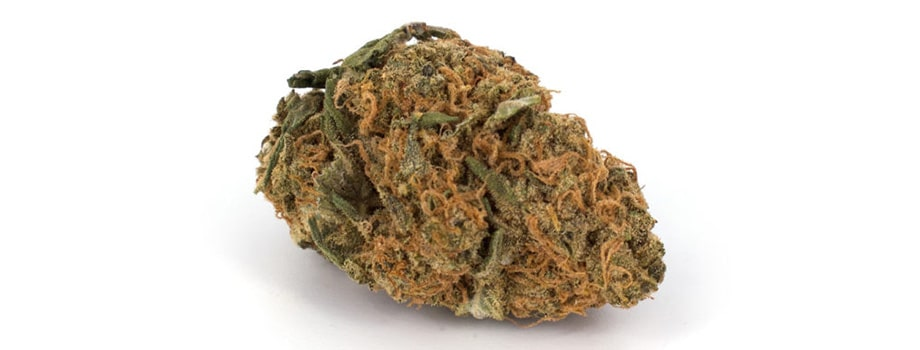 bubba kush indica strain buy weed online in canada.