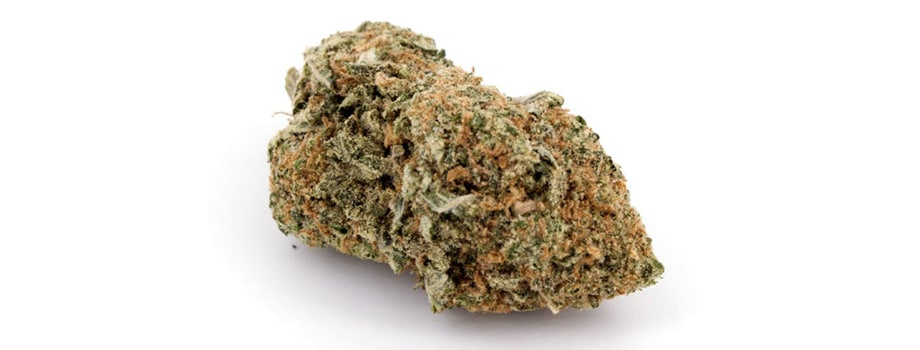 girl scout cookies indica strain buy weed online in canada.
