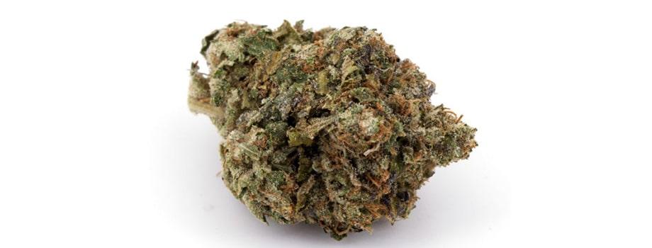 skywalker OG indica strain buy weed online in canada.