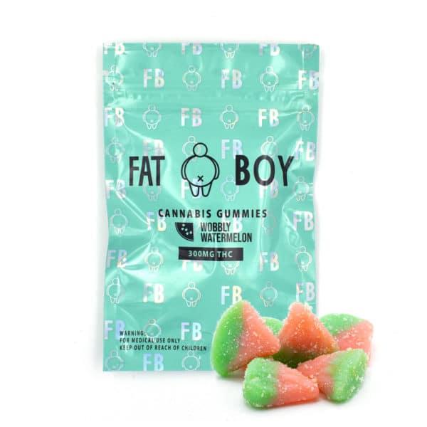 fat boy wobbly watermelon 1